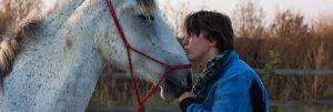 Feedback-pferdegestütztes-Coaching
