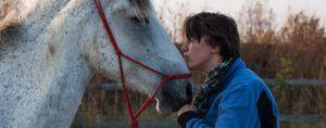pferde_studie Horse for Company - pferdegestütztes Coaching